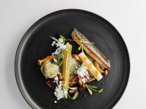 Orangery Mackerel (2)