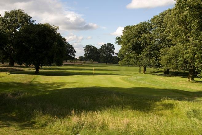 golftreesflag